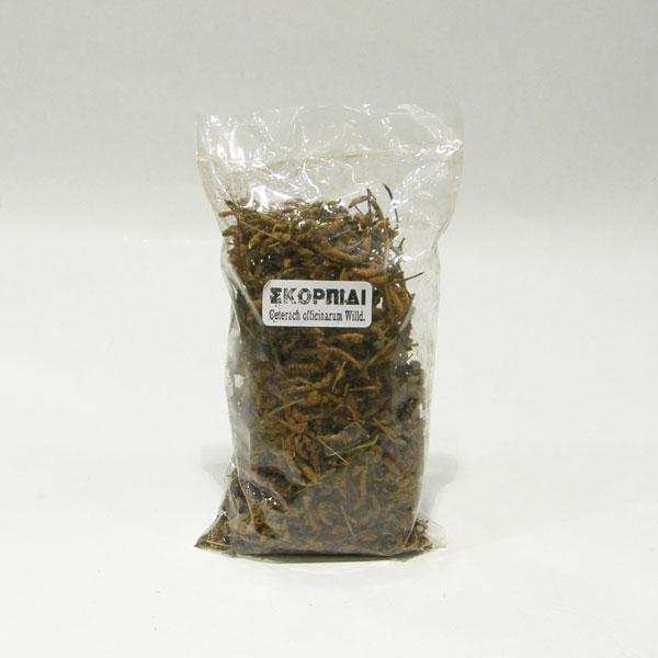 Σκορπίδι  ( Ceterach  officinarum D.C.)
