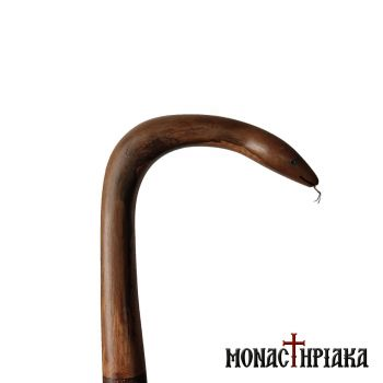 Walking Stick with Snake Shaped Grip